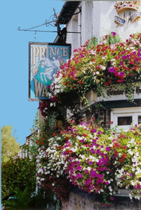 The Prince of Wales Pub Weybridge Surrey - sign surrounded by beautiful hanging baskets